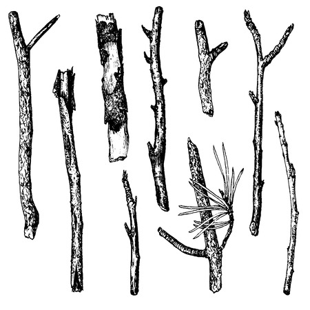 twigs: vector set of ink drawing wood twigs,isolated hand drawn nature objects, tree branches, sticks, hand drawn vector illustration