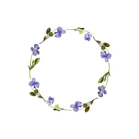 Marco floral con flores silvestres dibujo de la acuarela, tarjetas de violetas, plantas silvestres pintado, ilustración botánica en el estilo vintage, color de dibujo floral plantilla, dibujado a mano ilustración