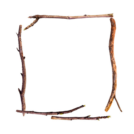 birch bark: rectangle frame with watercolor wood twigs,isolated hand drawn nature objects, tree branches, wooden sticks, hand drawn illustration, nature template,forest background Stock Photo