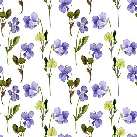 floral seamless pattern with watercolor drawing wild flowers, background with violets, painted  wild plants, botanical illustration in vintage style, hand drawn  illustration Stock Photo