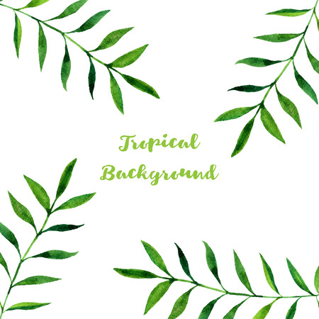 palmetto: background with watercolor green  leaves of palm tree, exotic leaves, tropical nature background, hand drawn background