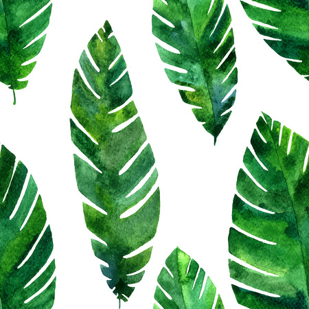 palmetto: seamless pattern with watercolor green  leaves of palm tree, exotic leaves, tropical nature background, hand drawn background Illustration