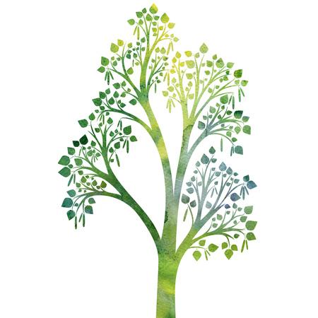 Verde De La Silueta De Ramas De árboles De Abedul Con Hojas De ...