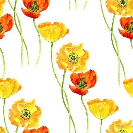 naadloze patroon met bloemen waterverftekening van gele papavers, achtergrond met geschilderde wilde planten, botanische illustratie in vintage stijl, kleur florale versiering, met de hand getekende natuur achtergrond