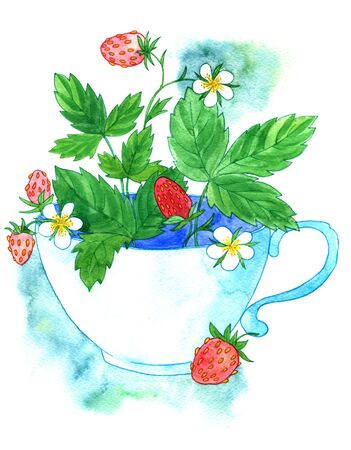 red berries: cup of tea with strawberries leaves, flowers and red berries, drawing in watercolor,hand drawn illustration Stock Photo