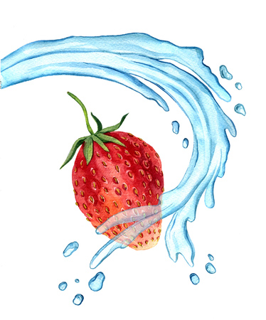 appetite: watercolor drawing strawberry with water splash, appetite red berry with green leaves and drops isolated at white background, hand drawn illustration