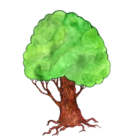 cartoon green tree drawing by watercolor, big doodle oak isolated at white background, nature backdrop, forest template, hand drawn illustration Stock Photo