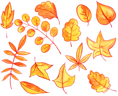 set of autumn watercolor orange and yellow leaves and berries, hand drawn design elements Stock Photo