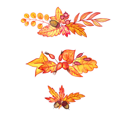 set of autumn watercolor leaves,acorns and berries, hand drawn design elements