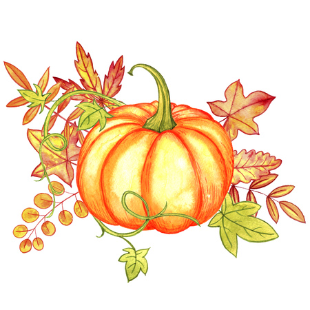 watercolor isolated orange pumpkin and autumn leaves at white background, hand drawn illustration,thanskgiving card