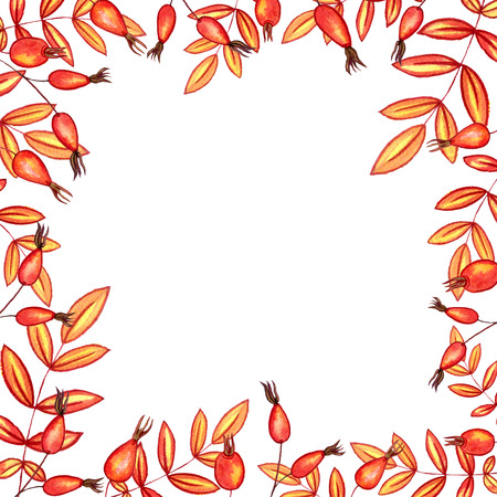 simplify: background with autumn watercolor leaves and red berries , nature template,foral frame, hand drawn design elements Stock Photo