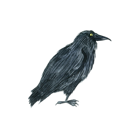 watercolor black raven, drawing bird, hand drawn illusration Stock Photo