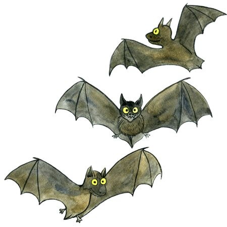 watercolor drawing cartoon bats isolated at white background, set of doodle animals, hand drawn illustration