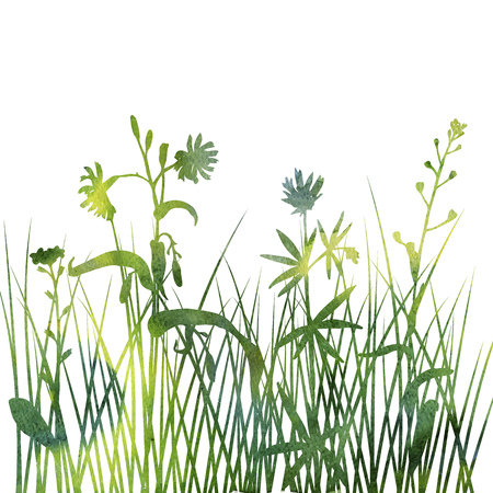watercolor silhouettes of flowers and grass, background with wild plants, herbal backdrop, artistic floral template, hand drawn illustration Stock Photo