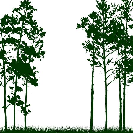 paisaje silueta con pinos y la hierba, fondo de la naturaleza, bosque verde, ilustración vectorial dibujado a mano