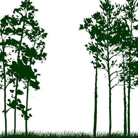 larch: silhouette landscape with pine trees and grass, nature background, green forest, hand drawn vector illustration