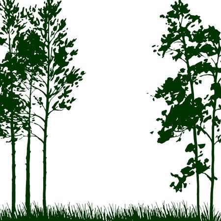 silhouette paesaggio con alberi di pino e di erba, la natura di fondo, verde bosco, disegnata a mano illustrazione vettoriale