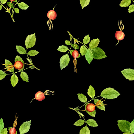eglantine: seamless pattern with watercolor branches of briar with green leaves and orange and red berries at black backdrop, hand drawn illustration, painting floral background