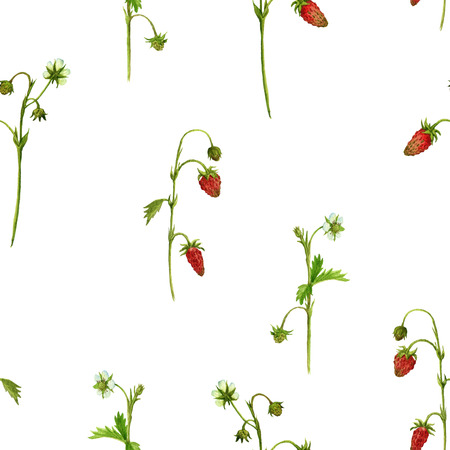 seamless pattern with watercolor drawing plants of strawberry with flowers, red berries and green leaves, ornament with painted herbs, botanical illustration in vintage style, floral background Stock Photo