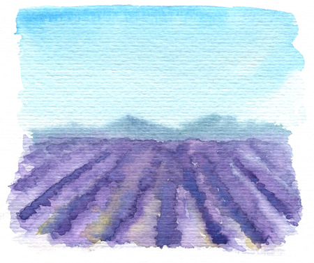 provence: hand drawn lavender provence landscape, watercolor illustration