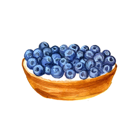 blueberry cheesecake: watercolor cake with fresh blueberries isolated at white background, hand drawn illustration