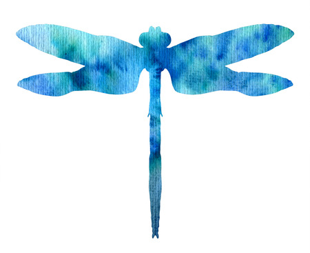 color watercolor silhouette of blue dragonfly, isolated insects, hand drawn design elements