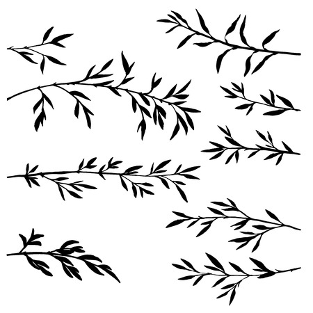 set of tree branches with leaves, bamboo shoots,isolated hand drawn vector elements Illustration