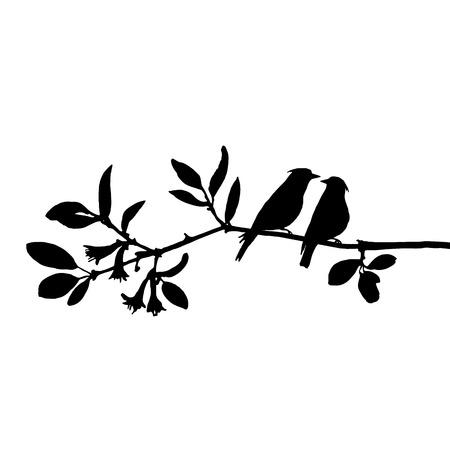vector silhouettes d'oiseaux à l'arbre, waxwings dessinés à la main à la branche, symbole de la Saint-Valentin, une paire d'amoureux, élément vectoriel isolé