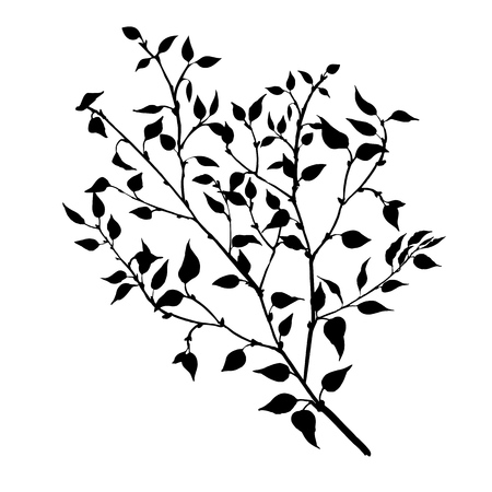 tree branches with leaves and berries, fruit trees twig,isolated hand drawn vector element Illustration