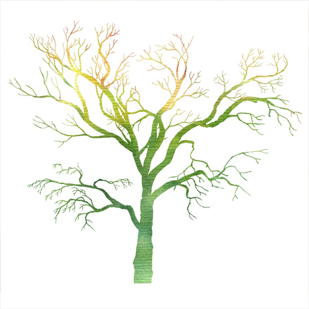twigs: watercolor tree silhouette without leaves, spring twigs, hand drawn nature background Stock Photo