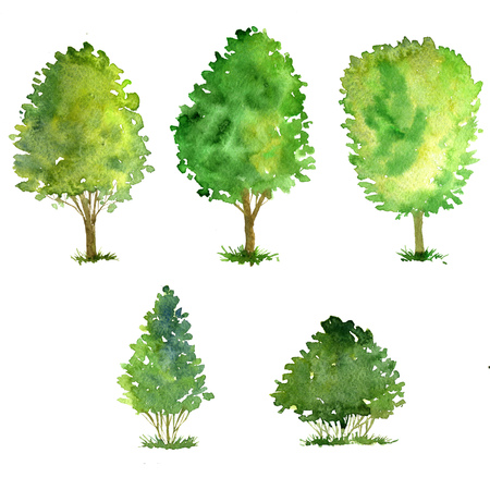 set of trees drawing by watercolor, bushes and decidious, green green foliage,isolated natural elements, hand drawn illustration