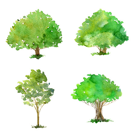 foliage  natural: set of trees drawing by watercolor, bushes and decidious, green foliage,isolated natural elements, hand drawn illustration