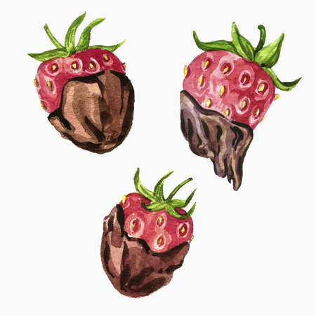vector strawberry with chocolate drawing in watercolor Illustration
