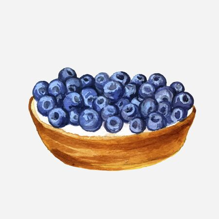 blueberry pie: vector watercolor cake with fresh blueberries , hand drawn illustration