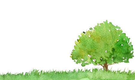 waterverf landschap met bomen en gras, groen gebladerte, abstracte aard achtergrond, bos sjabloon, met de hand getrokken illustratie