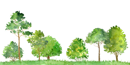 watercolor landscape with deciduous trees,pine, bushes and grass, abstract nature background, forest template, green foliage and plants, hand drawn illustration 写真素材