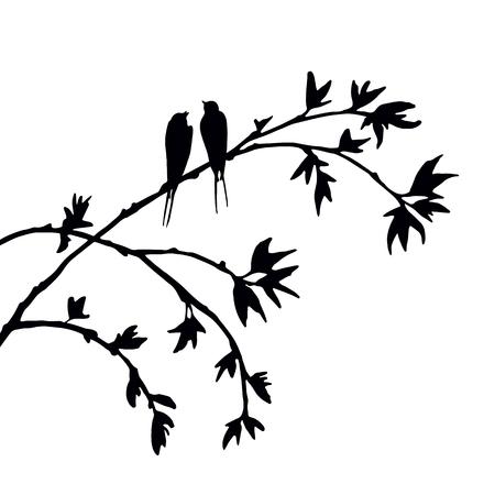 silhouettes vecteur d'oiseaux à arbre, tiré par la main des oiseaux chanteurs à la branche, symbole Valentine, un couple d'amoureux, vecteur élément isolé