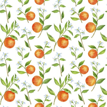 seamless pattern with fruit tree branches with flowers, leaves and oranges Stock Photo