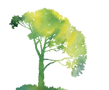 silhouette d'arbre vert avec des feuilles