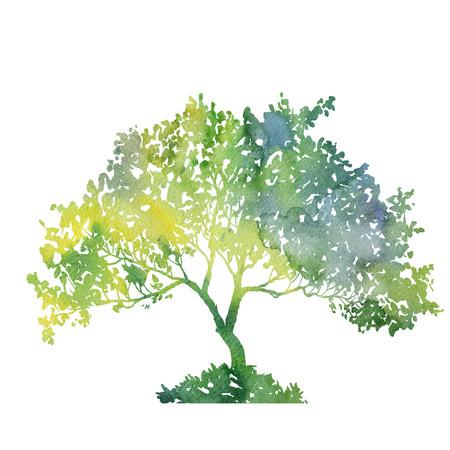 Silhouet van groene boom met bladeren