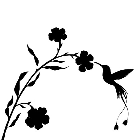 hummingbird and flower silhouettes, hand drawn flying bird, isolated vector element 版權商用圖片 - 75011007