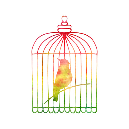 Goldfinch in a cage