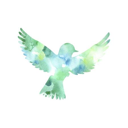 beak pigeon: watercolor flying bird silhouette