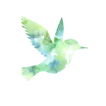watercolor flying bird silhouette