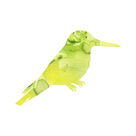 watercolor hummingbird silhouette