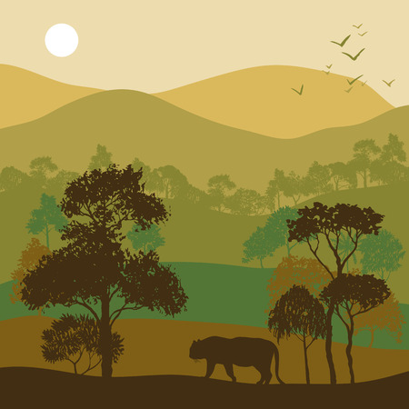 bengal: vector landscape with trees and tiger, jungle exotic background for banner or cover design, hand drawn illustration Illustration