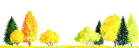 watercolor autumn landscape with deciduous trees, bushes, firs and grass, abstract nature background, forest template, yellow and red foliage and plants, hand drawn illustration