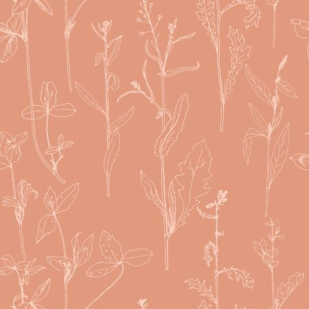 floral: Seamless pattern with drawing herbs and flowers