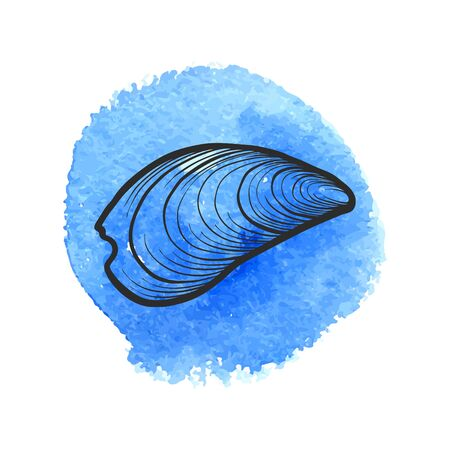 Vector sea shell at blue watercolor background, hand drawn illustration Illustration