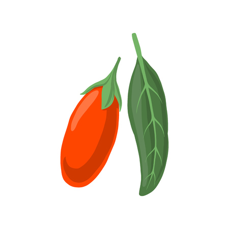 vector goji berry and leaf isolated at white background